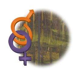 Prémio Viver Igualdade
