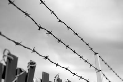 Vitimas Holocausto