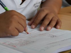 Governo reforça número de docentes em instituições de crianças e jovens em risco